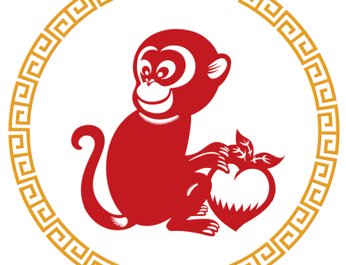 YEAR OF THE MONKEY 2016- ANYTHING CAN HAPPEN
