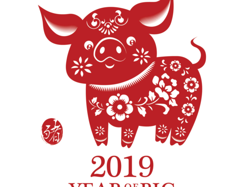 YEAR OF THE EARTH PIG 2019 AND YOUR MONEY